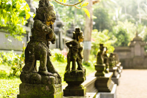 Bali-Indonesia-Holy-Water-Temple-2