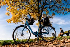Krefeld, Germany   Oct 2015   Fuji X-T1 + 16mm 1.4